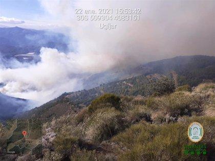 Hasta 60 bomberos forestales combatirán un incendio en Berja (Almería) complicado por el viento