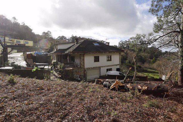 Vegetación cerca de una casa ubicada en Redondela, Pontevedra, Galicia, (España), a 22 de enero de 2021. Su caída se debe al paso del temporal 'Hortensia' que ha puesto en alerta naranja a la comunidad por rachas de viento superiores a los 90 kilómetros p