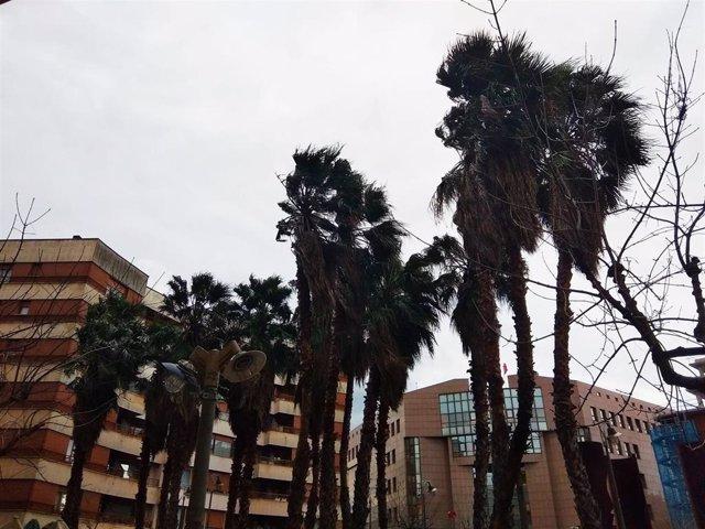 Rachas fuertes de viento en Euskadi.