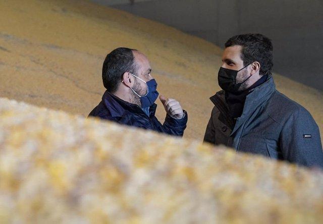 El líder del PP. Pablo Casado, en su visita a las instalaciones de Comercial ALECA en Lleida, junto al presidente del PP de Cataluña, Alejandro Fernández.