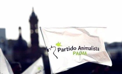 El Pacma recurre en amparo ante el TC la inadmisión de su candidatura a las elecciones catalanas