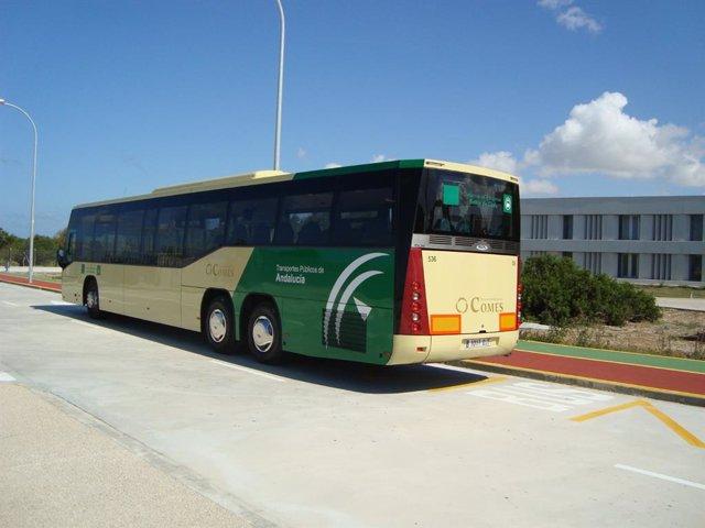 Nota De Prensa Y Foto (El Consorcio De Transportes Bahía De Cádiz Pondrá En Marcha La Operativa De Conexión Con El Campus De Puerto Real La Próxima Semana)