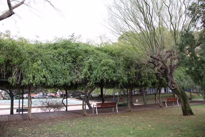 Cort revisa y reabre parques y zonas verdes de Palma a lo largo de este lunes