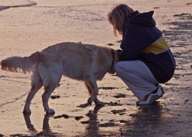 Las mujeres fueron determinantes para el vínculo ancestral entre humanos y perros