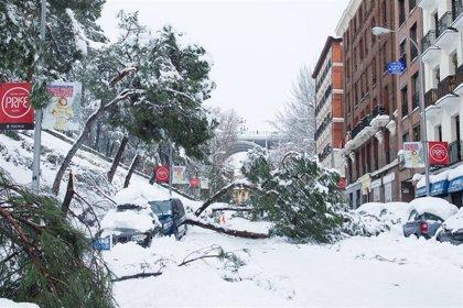La declaración de zona catastrófica incluye ayudas directas y medidas fiscales pero no el resarcimiento íntegro de daños