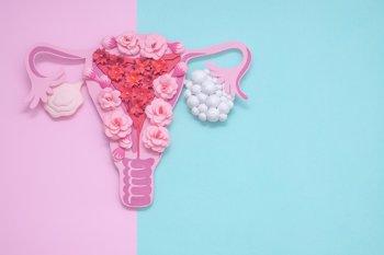 Foto: Expertos destacan el beneficio de la hormona de crecimiento en mujeres con los ovarios poliquísticos