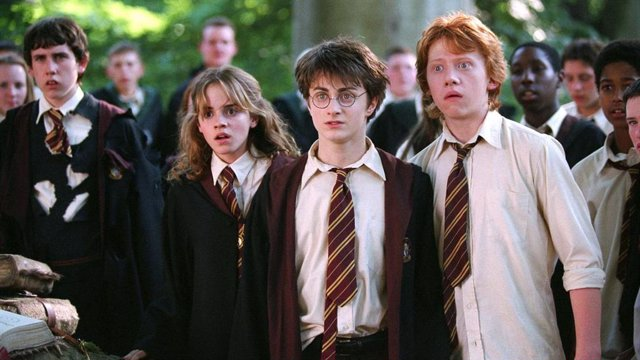 Imagen de la saga de Harry Potter