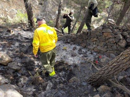 Una decena de bomberos permanecen esta noche en tareas de remate y liquidación del incendio de Berja (Almería)