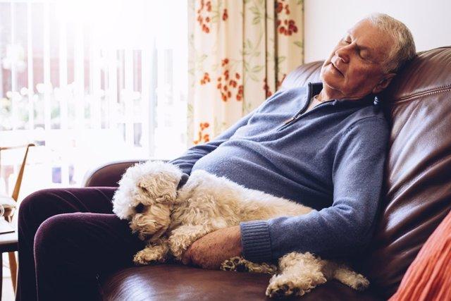 Hombre con  somnolencia diurna, siesta por la tarde en el sofá.