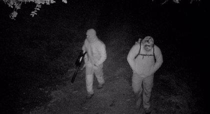 Investigados dos cazadores furtivos acusados de abatir a un jabalí en una finca de Cazalla de la Sierra (Sevilla)