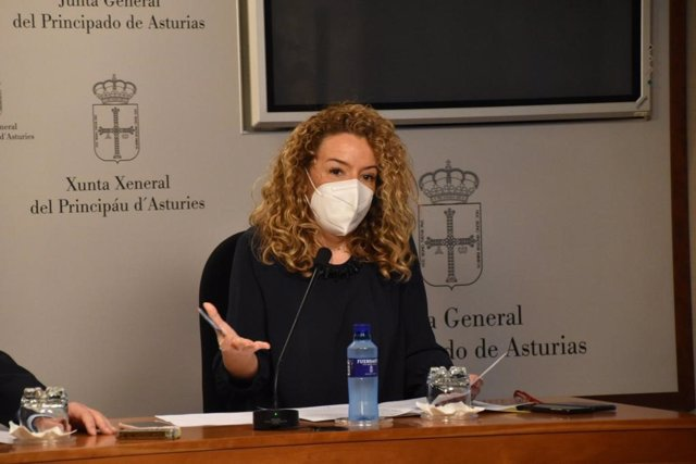 Teresa Mallada en rueda de prensa.