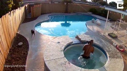 DESCONECTA.-Este hombre salva a su perra de morir ahogada en un jacuzzi