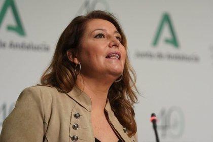 """Andalucía lamenta que el Gobierno """"imponga"""" una tasa plana en la PAC """"acelerando la convergencia"""""""