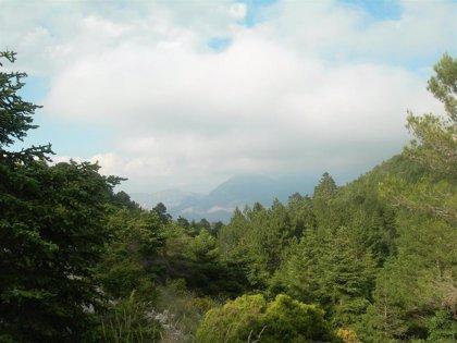 """Juanma Moreno valora la próxima declaración de Sierra de las Nieves como Parque Nacional: """"Un hito muy esperado"""""""