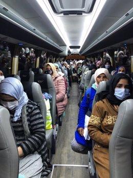 Temporeras del contigente contratado en origen en Marruecos son trasladadas a Huelva desde el Puerto de Algeciras (Cádiz).