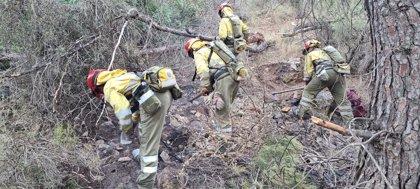 El incendio extinguido el domingo en el Parque Regional de Valle y Carrascoy afectó a 24,6 hectáreas