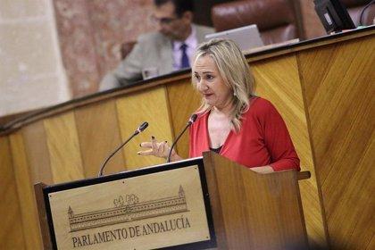 """Cs Sevilla defiende que el Plan 7.500 garantiza """"capacidad"""" sanitaria contra la tercera oleada"""