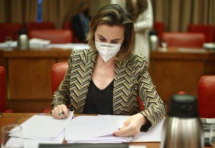 """Gamarra (PP) cree que Darias e Iceta no aportan """"nada nuevo"""" pero les pide escuchar más y pensar menos en votos"""