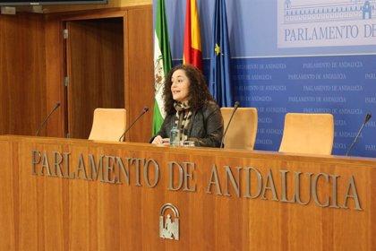 Adelante pide a la Junta de Andalucía un plan de empleo a través de ayuntamientos para 2021 y 2022