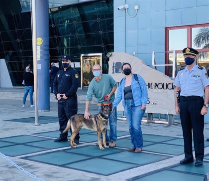 'Basco' encuentra familia en Gran Canaria tras retirarse de la Unidad Canina de la Policía Nacional