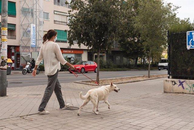 Una mujer paseando a un perro por la calle