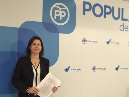 """PP-A afea el """"cinismo"""" del PSOE-A con la admisión del recurso en TC: """"Es un procedimiento reglado, no cabía otra opción"""""""