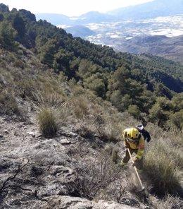 Un bombero forestal trabaja en la extinción de un incendio