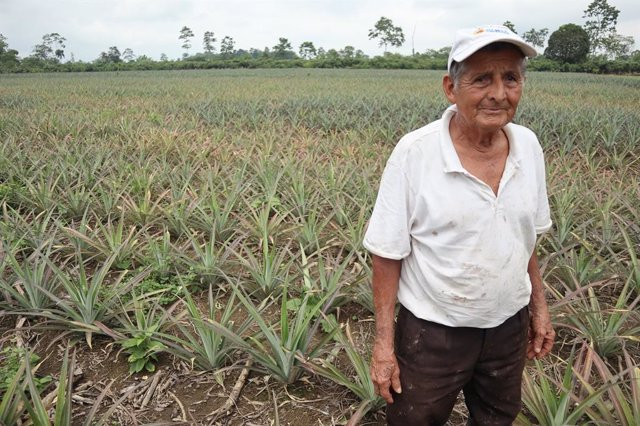 Proyecto de irrigación apoyado por AECID en Ecuador