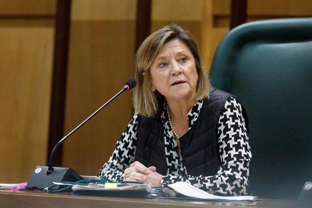 La consejera municipal de Infraestructuras, Vivienda y Medio Ambiente del Ayuntamiento de Zaragoza, Patricia Cavero