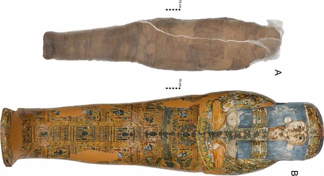 Individuo momificado y ataúd en la Colección Nicholson del Museo Chau Chak Wing, Universidad de Sydney.