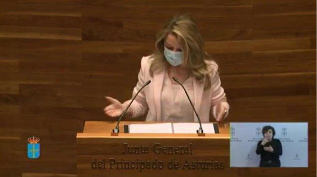 La portavoz del PP, Teresa Mallada, interviene en la Junta General del Principado.