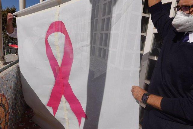 Funcionarios de la Asamblea colocan un gran lazo rosa en la fachada en solidaridad con las personas con cáncer de mama