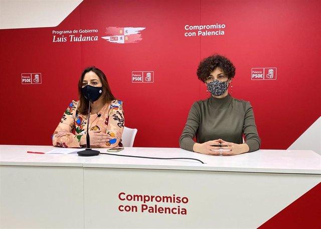El grupo municipal del PSOE en el Ayuntamiento de Palencia solicita la realización de dos comisiones extraordinarias.