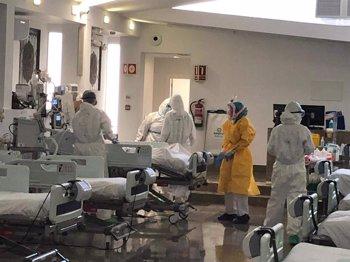 Foto: Estos son los tres perfiles del paciente crítico por COVID-19 en España