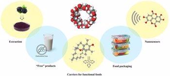 Foto: Las propiedades de la ciclodextrina sobre los alimentos funcionales