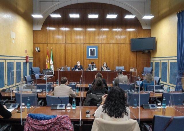 Foto de archivo de una sesión de la comisión de investigación sobre la Faffe creada en el Parlamento andaluz.