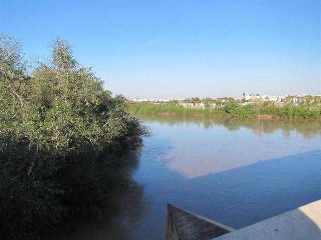 El río Guadalquivir a su paso por Córdoba, en una imagen de archivo.