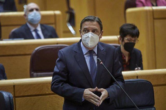 El ministro de Agricultura, Pesca y Alimentación, Luis Planas interviene durante una sesión de control al Gobierno en el Senado, en Madrid (España), a 2 de febrero de 2021. Durante el pleno, el Ejecutivo se enfrenta esta vez a preguntas relacionadas con l
