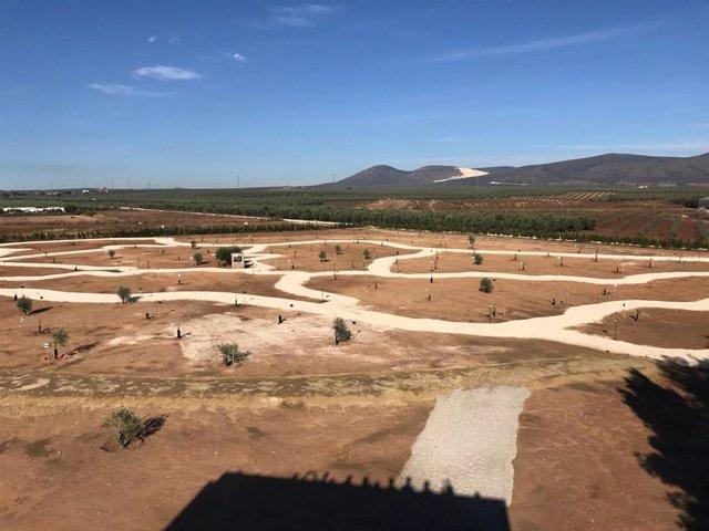 La Roda de Andalucía (Sevilla) estrena el edificio multidisciplinar de su Parque del Olivar, que dibuja el mapa de Andalucía y las variedades de olivar típicas de cada lugar dentro de cada una de las zonas asignadas a cada una de las provincias.