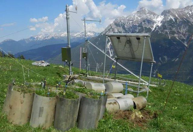 Para el estudio, se examinaron un total de 16 bloques de suelo de Kaserstattalm, un sitio para la investigación de ecosistemas a largo plazo en el Tirol.