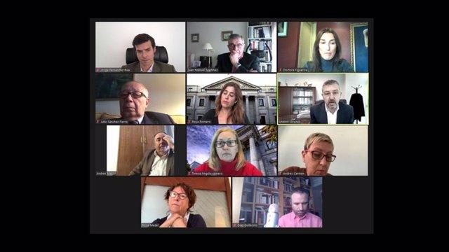 Reunión Mantenida Entre FEP Y Acción Visión España Con Los Representantes De La Comisión De Sanidad Del Congreso De Los Diputados