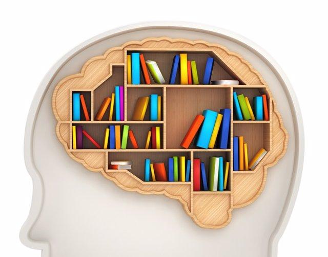 Cerebro, almacenaje, recuerdos.