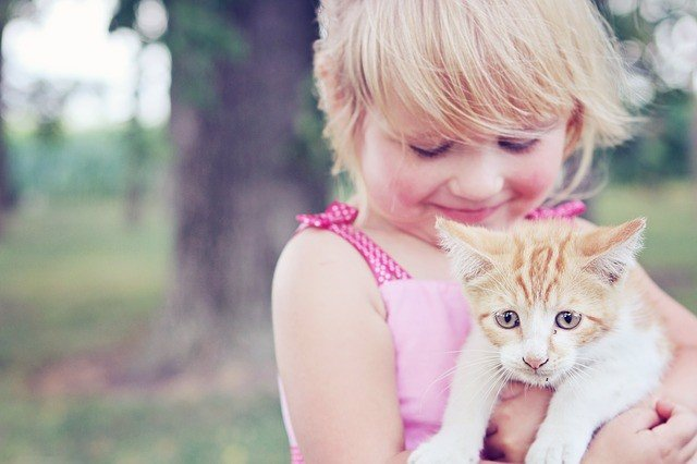 Niña en el campo con un gato, mascota