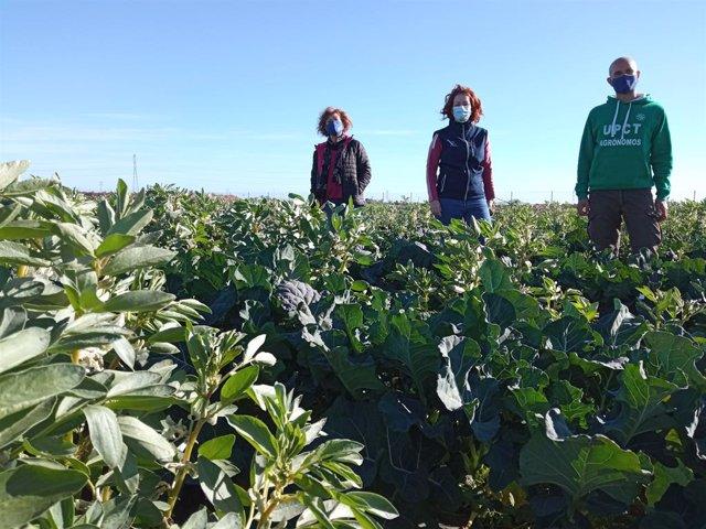Foto de Zornoza, Virginia Sánchez y Josefina Contreras en la finca donde se han realizado los ensayos.