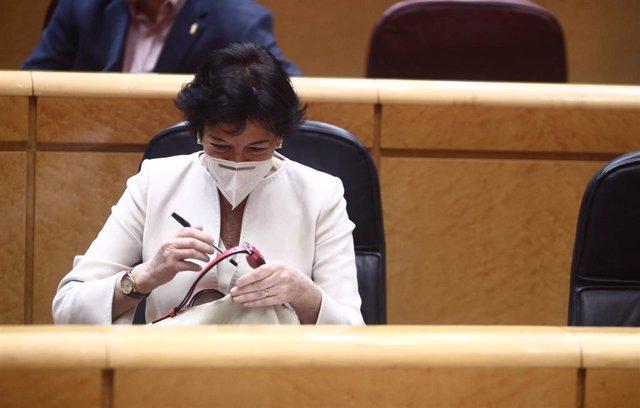 La ministra de Educación, Isabel Celaá, durante una sesión plenaria en el Senado