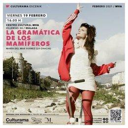 Cartel de 'La gramática de los mamíferos' de la actriz y bailaora 'La Chachi'
