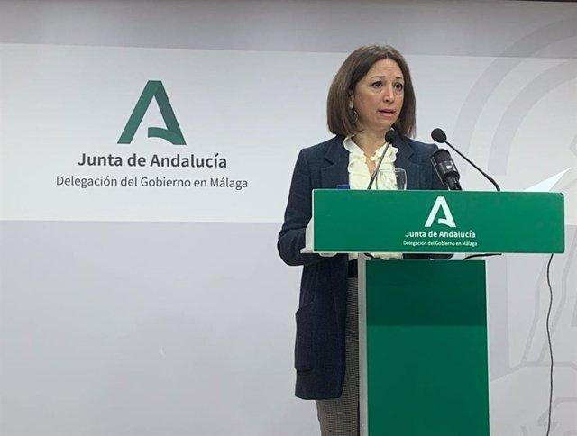 La delegada del Gobierno andaluz en Málaga, Patricia Navarro, en rueda de prensa