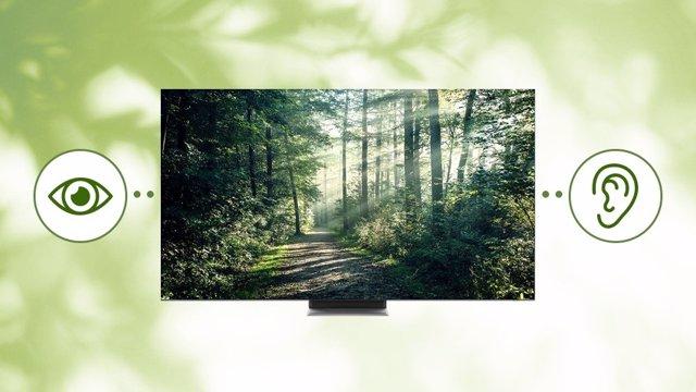 Tecnologías que hacen los televisores más accesibles