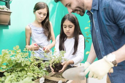 Huerto en casa y otras ideas para disfrutar del ecologismo doméstico con niños