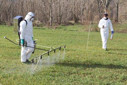 Los herbicidas favorecen a las bacterias resistentes a los antibióticos